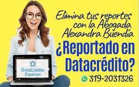 ¿Reportado en DataCrédito? Trámite de eliminación de Reportes- Abogada
