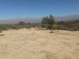Vendo terreno en Huaco