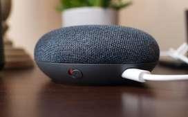 Asistente Google Home Mini