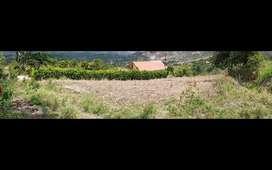 Terreno en venta Yunguilla Sector (Cercaloma )