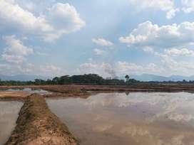 Terreno agrícola 88.5 hect.S/.18,000.San Martín.Excelente oportunidad!