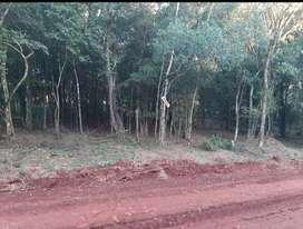 Vendo o Permuto terreno en Eldorado Misiones, km9.