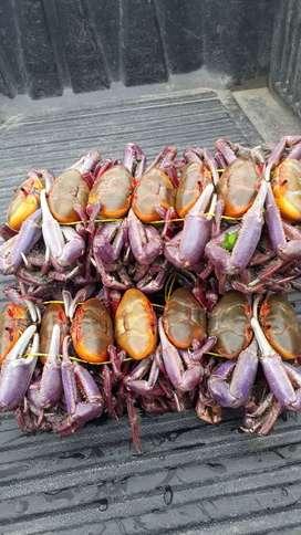 Venta de cangrejo al mayor y menor