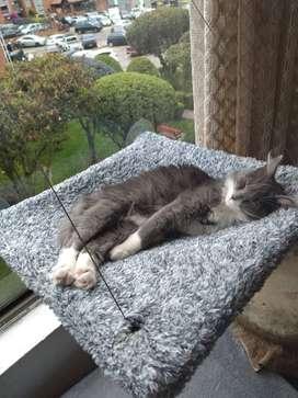 Cama o Hamaca de Ventana para Gato