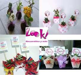Regalos Recuerdos suculentas plantitas cactus matrimonio misa babyshower bautizo cumpleaños regalo dia dela madre