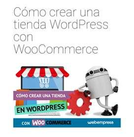 Curso  ProfesionalCreación de Negocios en WordPress