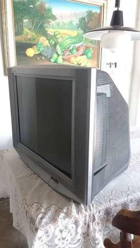 """Televisor Sony pantalla plana de 28"""" perfectas condiciones, económico"""