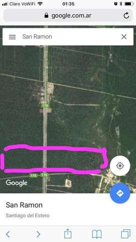 Vendo Campo 81 hectareas sobre ruta176