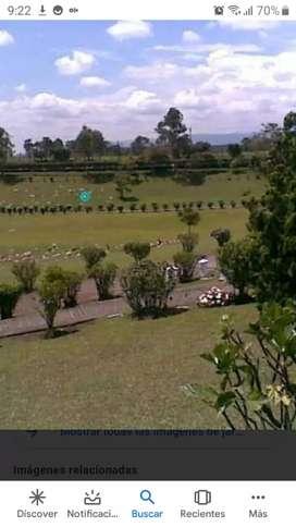 Lote para entierro jardines de paz