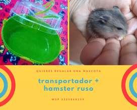 Transportador + hamster