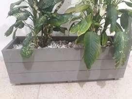 Maceteros para tus plantas