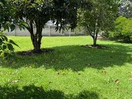 Venta - Conocoto, sector San Antonio, casa de un solo piso, con  área verde  llena de árboles frutales.