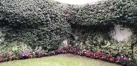 Jardíneros a Domicilios en Bogotá
