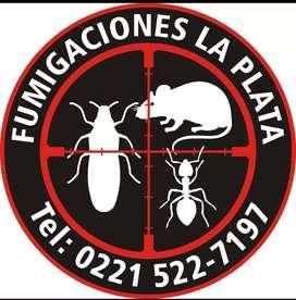 Fumigaciones La Plata, Certificados Municipales para Habilit