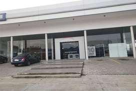 Alquilo Terreno más Edificación en la Ave. Juan Tanca Marengo