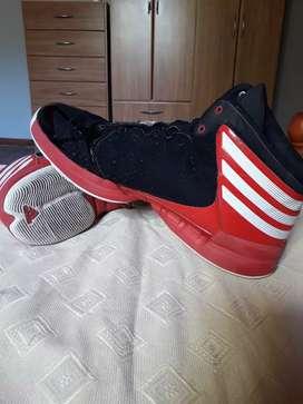 Zapatillas de básquet