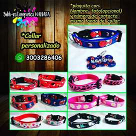Placas y collar perros y gatos