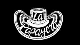Banda Papayera Los Divertidos