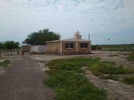 Campo En Venta En Real Sayana, Santiago Del Estero, Con Casa a metros de la ruta nacional 34.
