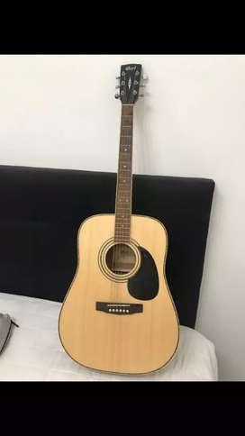 Guitarra Acústica Ad880