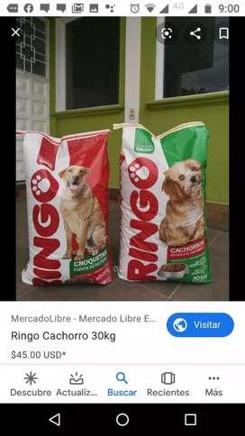 Comida de perros ringo