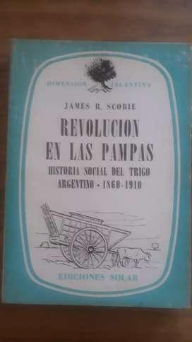 Revolución de las Pampas