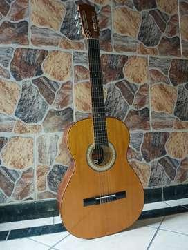 Guitarra con estuche en perfecto estado.