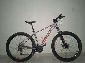 Bicicleta ganga Rin 29