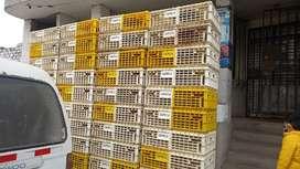 Se vende jabas para pollo