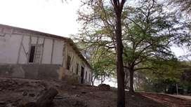 Terreno de 2,388.60 m2 en Piura