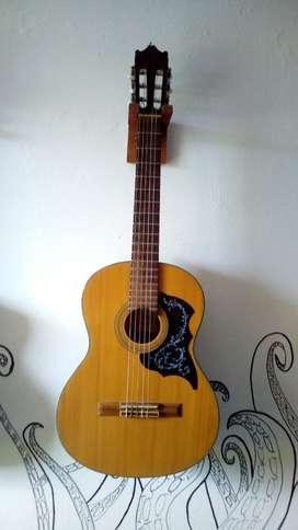 Vendo o cambio guitarra por una tele