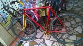Bicicleta estilo fixie