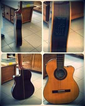 guitarra fonseca
