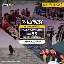 TOUR AVISTAMIENTO DE BALLENAS PUERTO LOPEZ