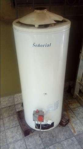 Vendo termotanque Señorial 50L muy buen estado en Los Cardales