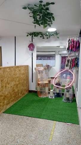 Operario para taller de fabricación de accesorios para mascotas