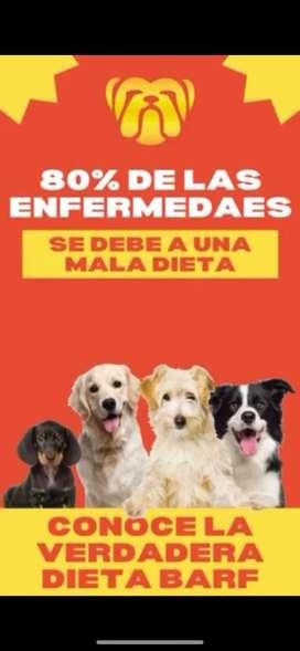 Comida natural para perros, alientalos correctamente , asesoria garantizada