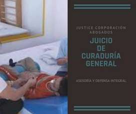 Abogados LOJA Justice Corp.JUICIO DE CURADURÍA GENERAL