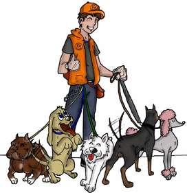 Se pasean perros