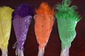 plumas avestruz 30-35cm varios colores