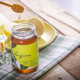 Miel Agroecológica Limón o Eucalipto Las Quinas x 500g