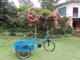Se fabrica tricicleta Multicervicios inventor: Ramón Estacio
