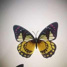 Mariposas Plásticas decorativas