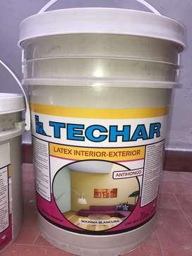 "Latex ""Techar"" X 20Lts Antihongo Int/Ext"