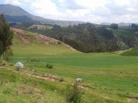Terreno plano 2500 m2 en Chinchero Cusco 13 $ m2