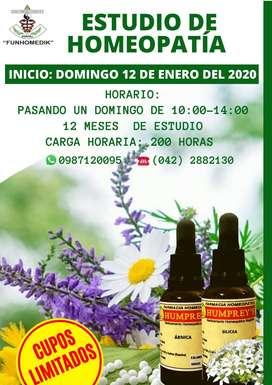 curso de homeopatía en ecuador