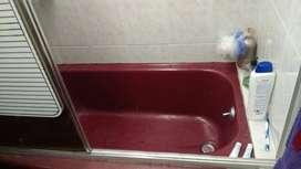 Tina baño de hierro
