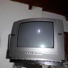"""Televisor de 14""""  con soporte d pared"""