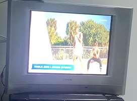 Vendo tv sony  21 pulgadas