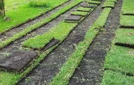 Venta e instalacion de prado